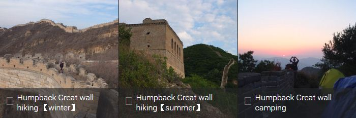 Humpback Great wall